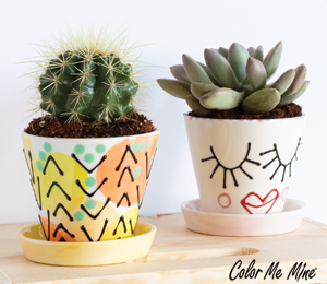Tucson Cute Planters